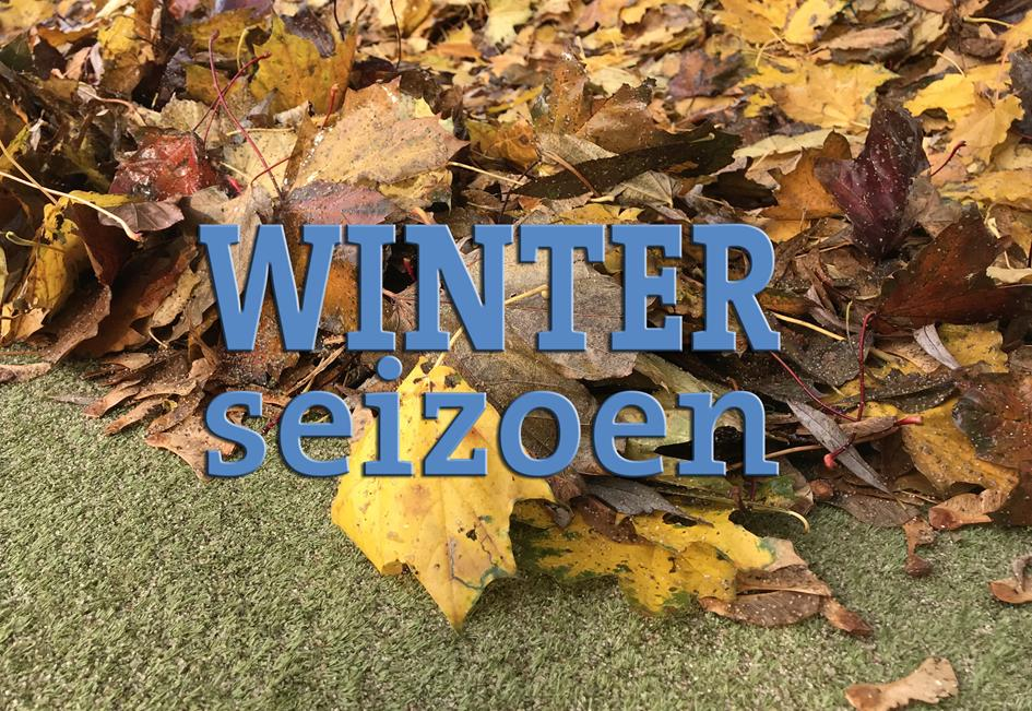 Winter seizoen